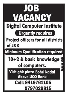 Digital computers institute