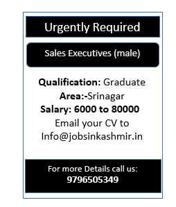 Sales Executives (male)