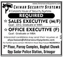 Chinar security system