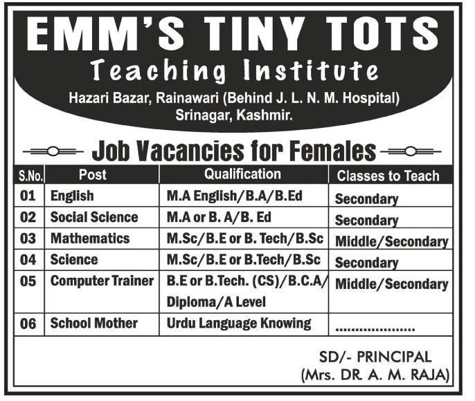 Emm's tiny Tots Teaching Institute