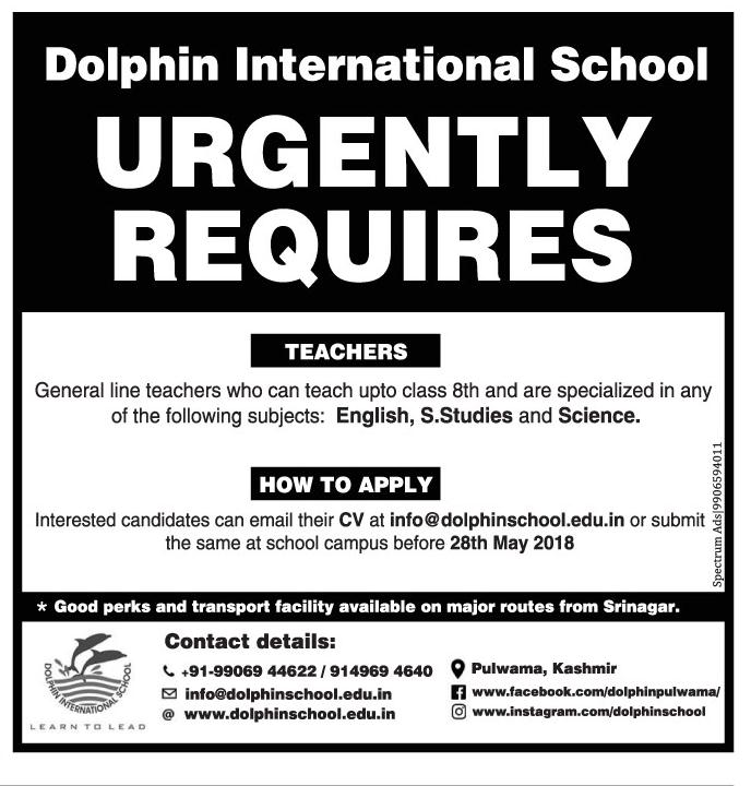 Dolphin international School