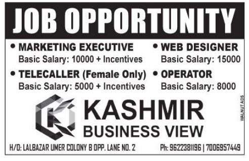 Kashmir Business View
