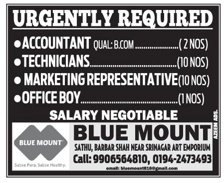 Job in Blue Mount