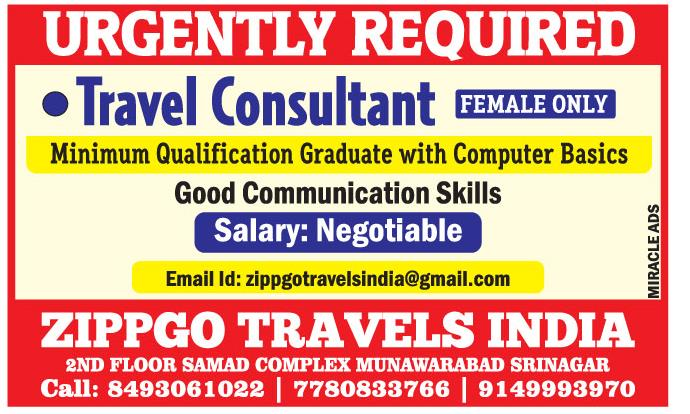 Job Opening Zippgo Travels India