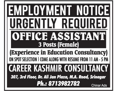 Job Opening 2019 Career Kashmir Consultancy