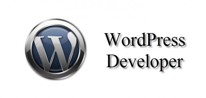 Website Developer Needed Expert in WordPress